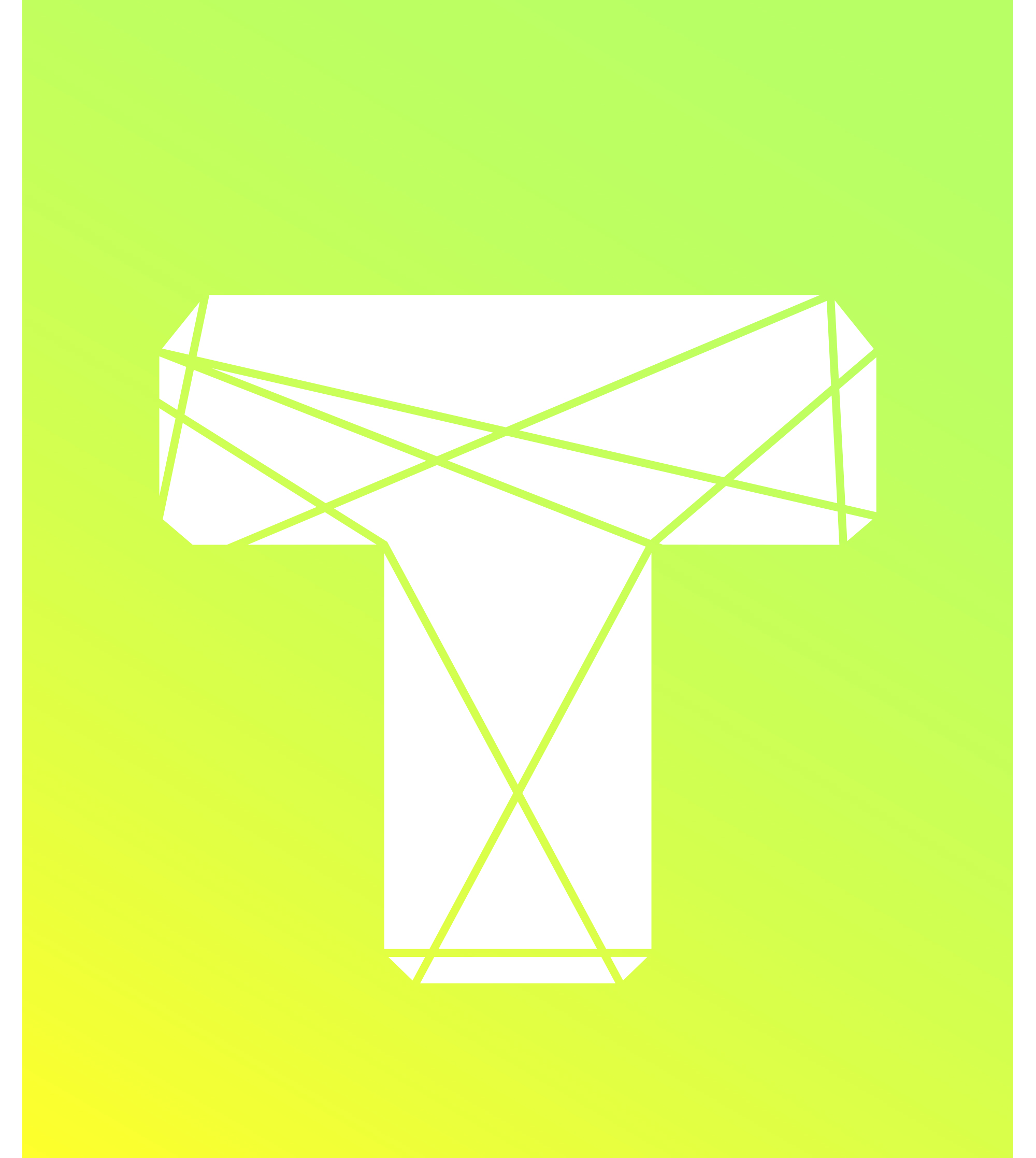Logo TOWNUS